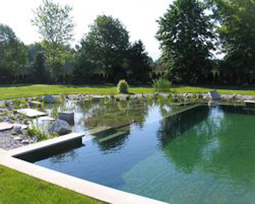 natural swimming pools milford, pa